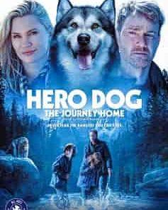 Hero Dog The Journey Home Moviesjoy